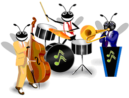 Picture of the Java bug band.
